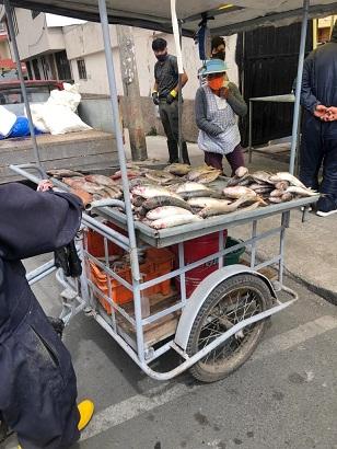 Mariscos se venden en todo Riobamba. https://laprensa.com.ec