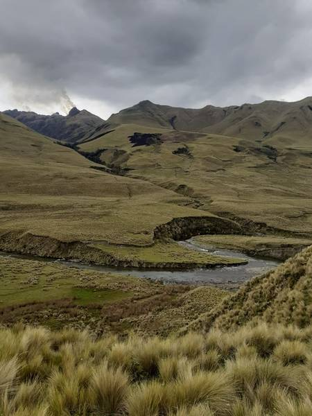 Agua nace en zona Ichubamba Yasepán. https://laprensa.com.ec