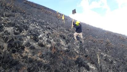 Riobamba el cantón con más flagelos forestales en Chimborazo. https://LAPRENSA.COM.EC