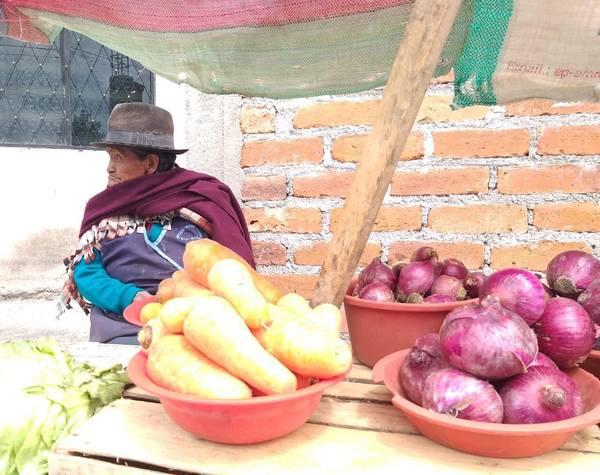Testimonios Riobamba: María no deja de trabajar. http://LAPRENSA.COM.EC