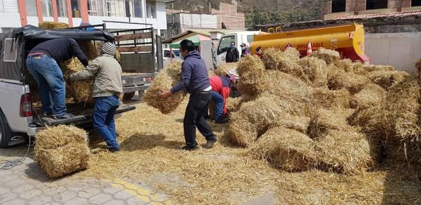 Productores de Chimborazo afectados por la ceniza reciben ayuda del MAG. https://laprensa.com.ec
