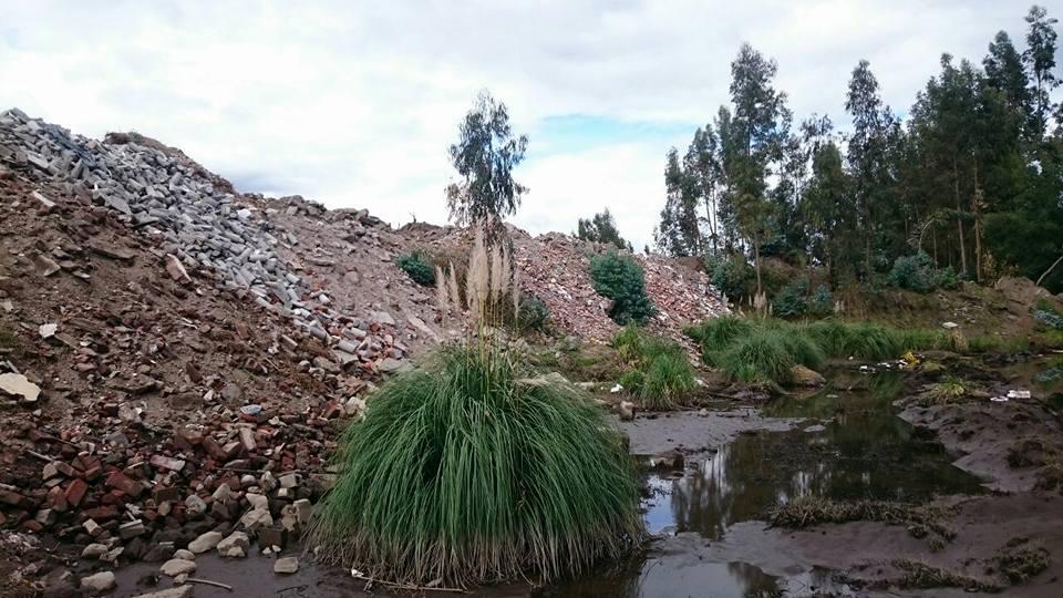 Medio Ambiente: Quebrada de las Abras