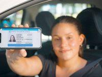 Licencia digita