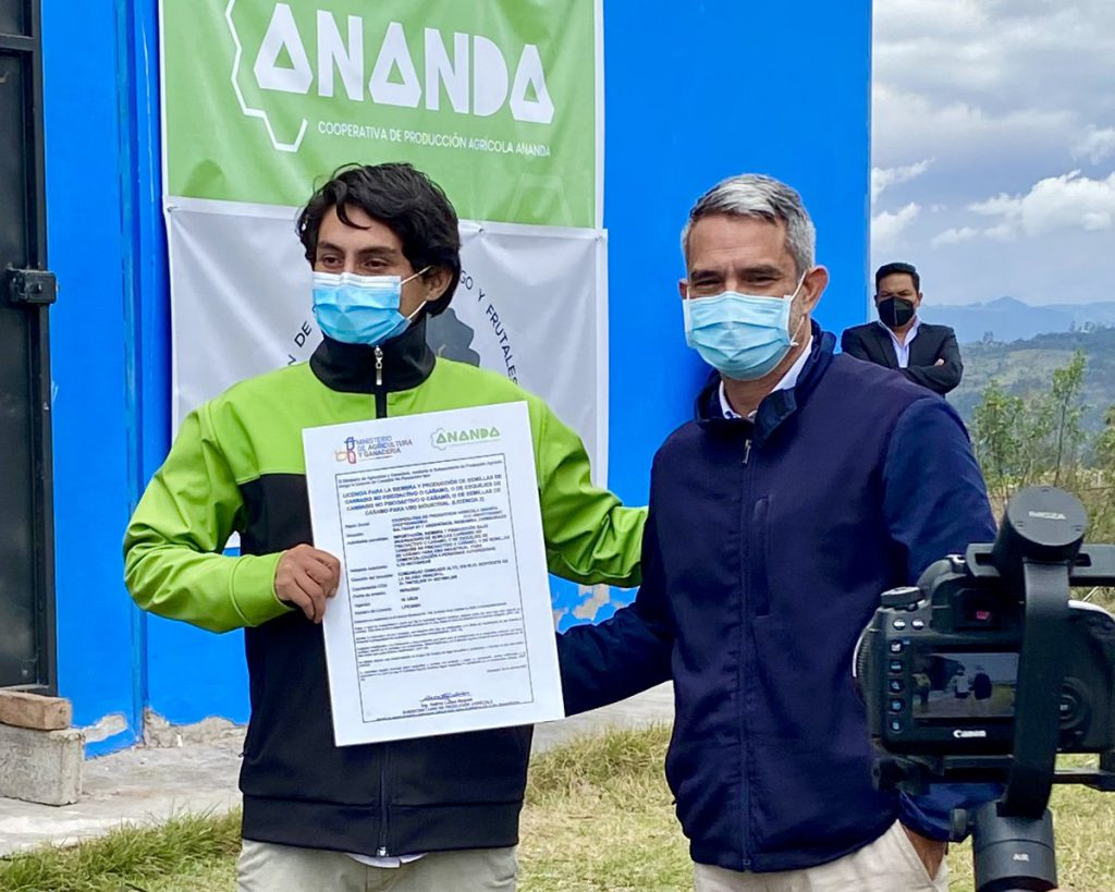 Cooperativa Ananda producirá semilla de cannabis medicinal en Chimborazo. https://laprensa.com.ec