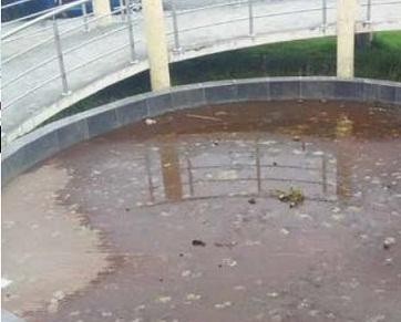 Problemas de salubridad Riobamba